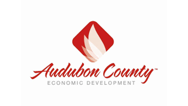 Executive Summary: Audubon